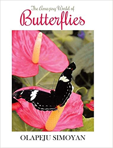 This brief introduction to the world of butterflies includes highlights of various species, a description of their life cycles, and stunning photographs.
